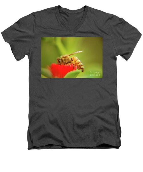Men's V-Neck T-Shirt featuring the photograph Worker Bee by Micah May