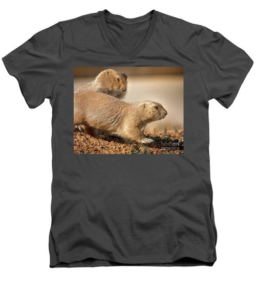 Men's V-Neck T-Shirt featuring the photograph Worried Prairie Dog by Robert Frederick