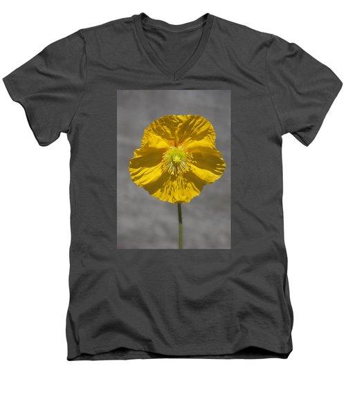 Wrinkled Beauty Men's V-Neck T-Shirt