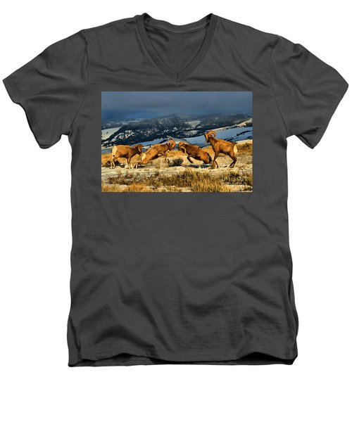 Men's V-Neck T-Shirt featuring the photograph Wyoming Bighorn Brawl by Adam Jewell