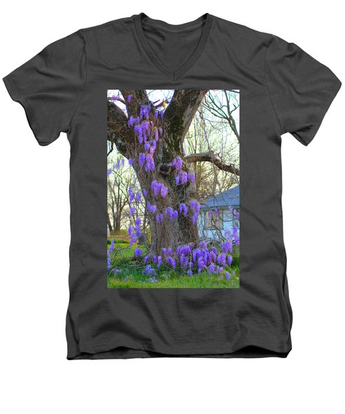 Wysteria Tree Men's V-Neck T-Shirt