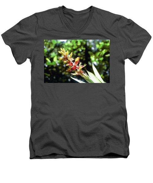 Yado Men's V-Neck T-Shirt