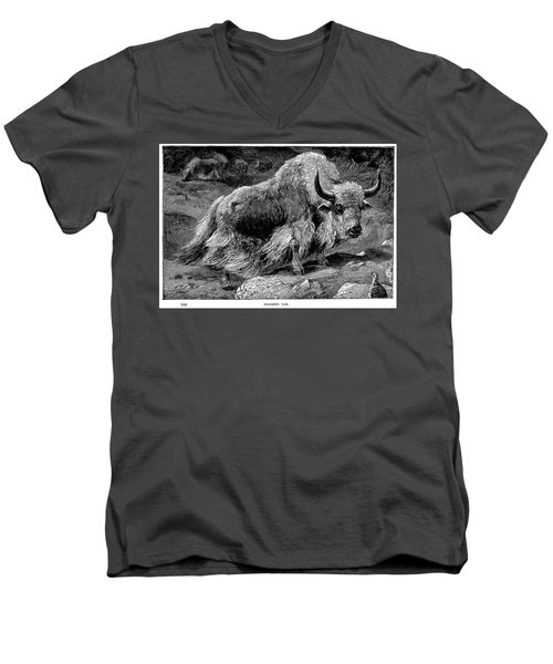 YAK Men's V-Neck T-Shirt