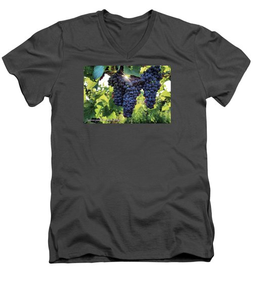 Men's V-Neck T-Shirt featuring the photograph Yakima Valley Grapes by Lynn Hopwood