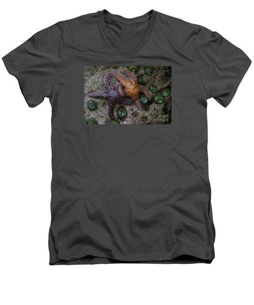 Orange And Purple Starfish II Men's V-Neck T-Shirt