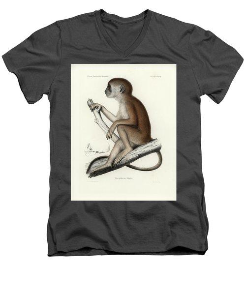 Yellow Baboon, Papio Cynocephalus Men's V-Neck T-Shirt by J D L Franz Wagner