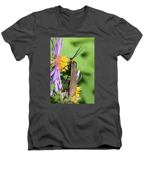 Yellow-collared Scape Moth Men's V-Neck T-Shirt