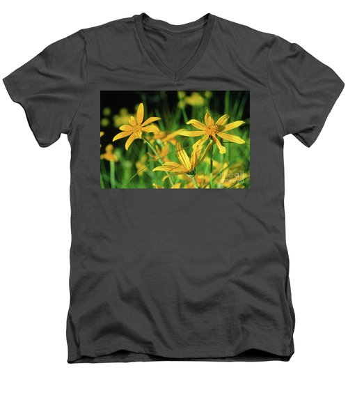 Yellow Daisies Men's V-Neck T-Shirt
