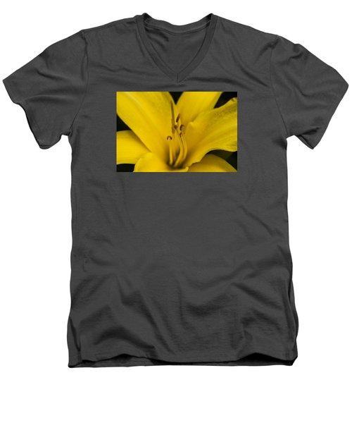 Yellow Men's V-Neck T-Shirt by Dan Hefle