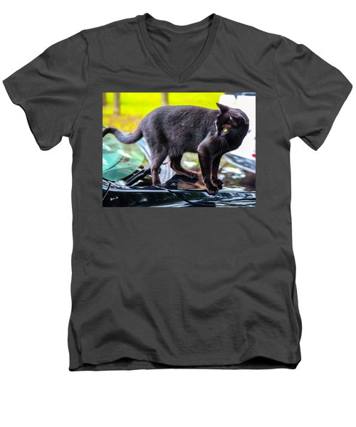 Men's V-Neck T-Shirt featuring the photograph Yellow Eyed Cat by Madeline Ellis