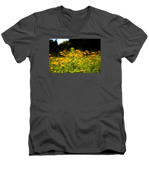 Yellow Field Men's V-Neck T-Shirt by Milena Ilieva