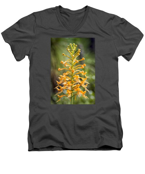 Men's V-Neck T-Shirt featuring the photograph Yellow Fringed Orchid by Bob Decker