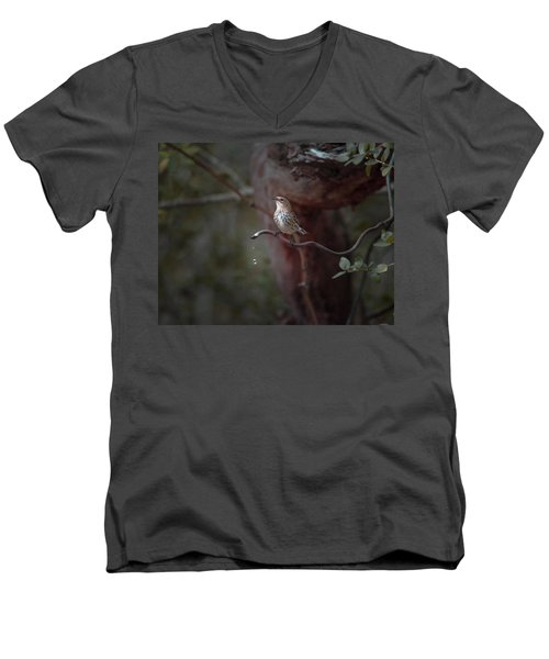 Yellow-rumped Warbler At Water Spout Men's V-Neck T-Shirt