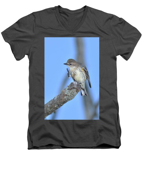 Yellow-rumped Warbler Itch Men's V-Neck T-Shirt