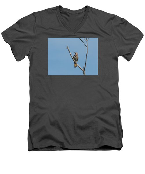 Yellow Shafted Flicker Front Men's V-Neck T-Shirt