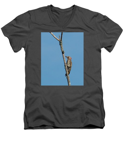 Yellow Shafted Flicker Men's V-Neck T-Shirt