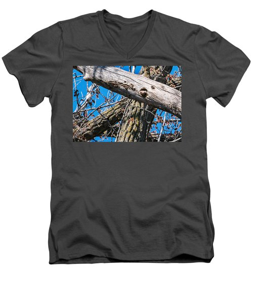 Yellow-shafted Northern Flicker Nest Building Men's V-Neck T-Shirt by Edward Peterson