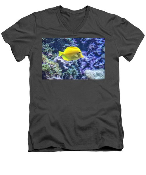Yellow Tang Men's V-Neck T-Shirt