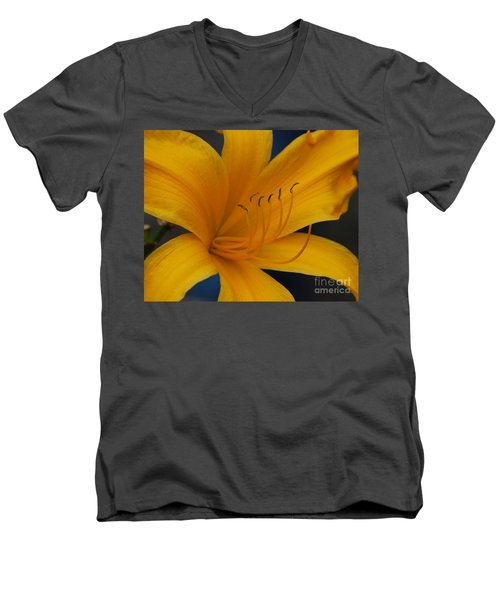 Yellow Tiger Lilly Men's V-Neck T-Shirt