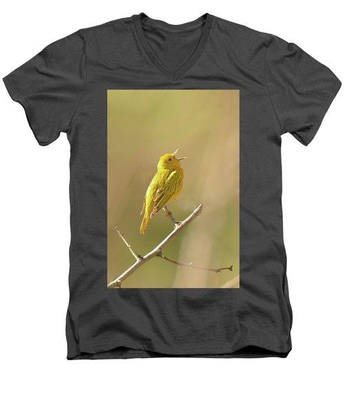 Yellow Warbler Song Men's V-Neck T-Shirt by Alan Lenk
