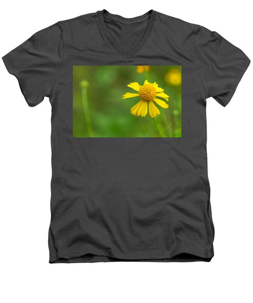 Yellow Wildflower Men's V-Neck T-Shirt