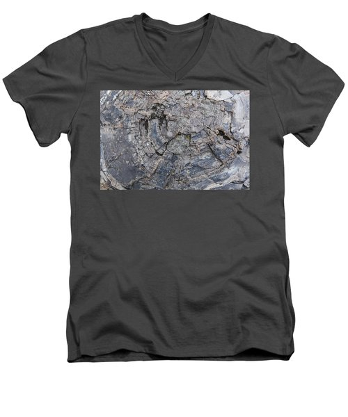 Yellowstone 3707 Men's V-Neck T-Shirt by Michael Fryd