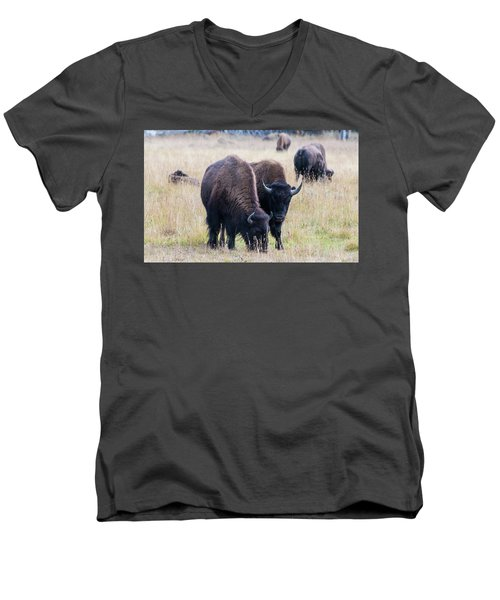 Men's V-Neck T-Shirt featuring the photograph Yellowstone Bison by Jennifer Ancker