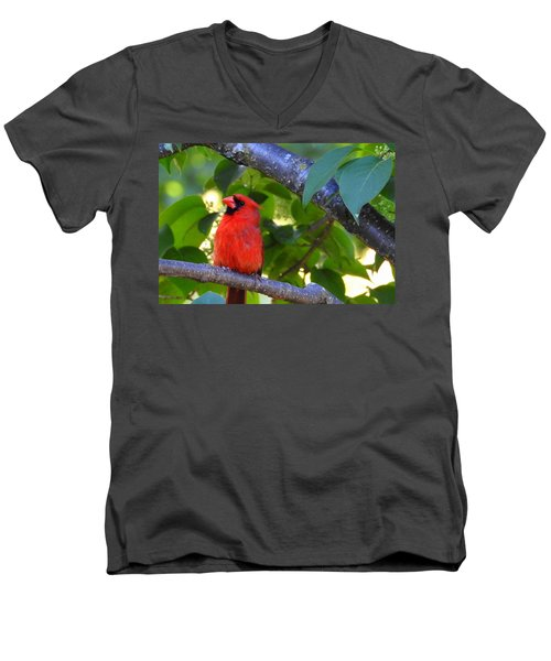 Men's V-Neck T-Shirt featuring the photograph Yes I'm Listening by Betty-Anne McDonald