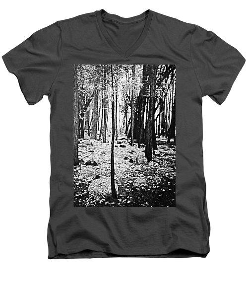 Yosemite National Park Men's V-Neck T-Shirt by Debra Lynch