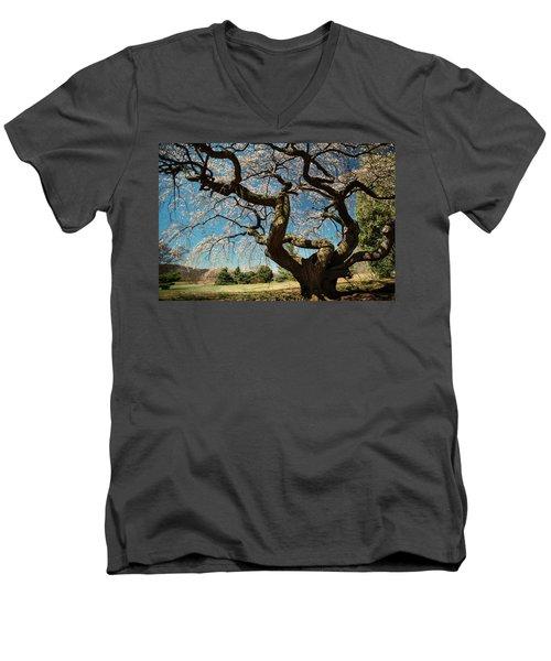 Men's V-Neck T-Shirt featuring the photograph Yoshino Cherry by Dana Sohr