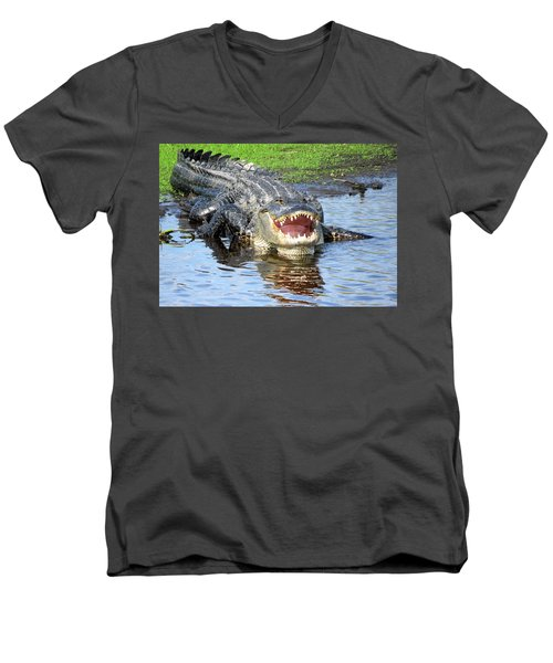 You May Think I'm Smiling Men's V-Neck T-Shirt by Rosalie Scanlon