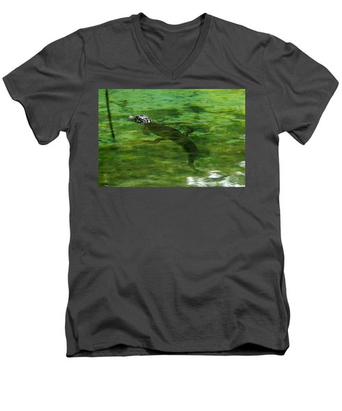 Young Alligator Men's V-Neck T-Shirt