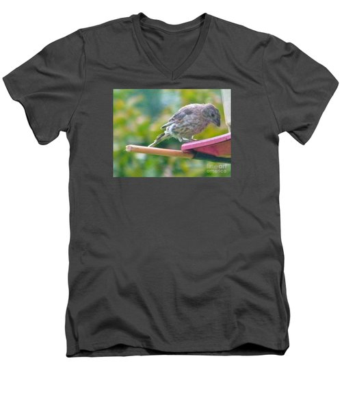 Young Crossbill Female  August  Indiana Men's V-Neck T-Shirt by Rory Cubel