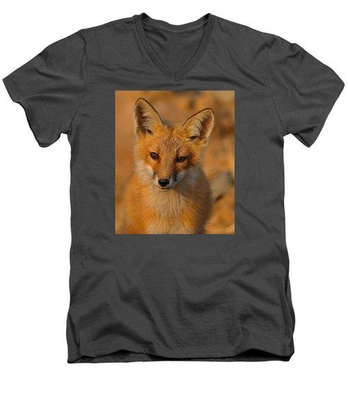 Young Fox Men's V-Neck T-Shirt