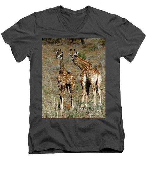 Men's V-Neck T-Shirt featuring the photograph Young Giraffes by Myrna Bradshaw