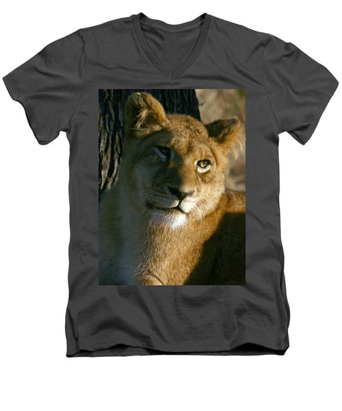 Young Lion Men's V-Neck T-Shirt