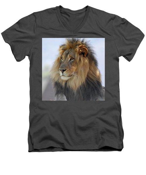 Young Male Lion Men's V-Neck T-Shirt