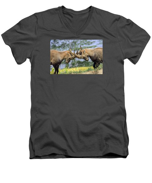 Young Male Wild Alpine, Capra Ibex, Or Steinbock Men's V-Neck T-Shirt by Elenarts - Elena Duvernay photo