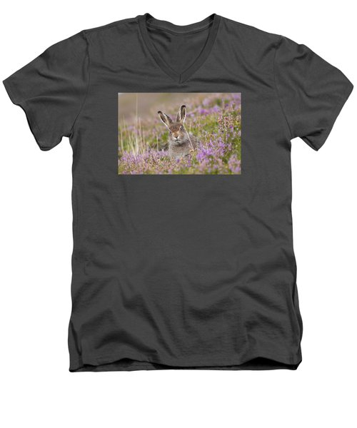 Young Mountain Hare In Purple Heather Men's V-Neck T-Shirt