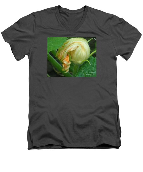 Men's V-Neck T-Shirt featuring the photograph Young Pumpkin Blossom by Christina Verdgeline