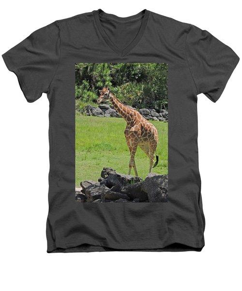 Youthful Men's V-Neck T-Shirt