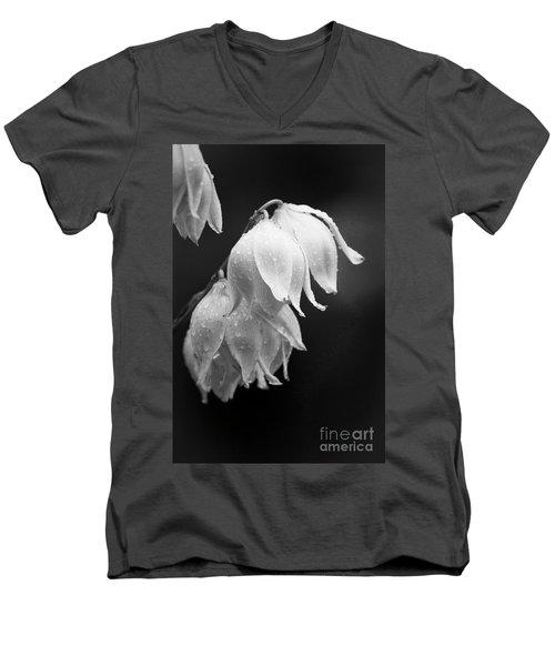 Yucca After The Rain Men's V-Neck T-Shirt