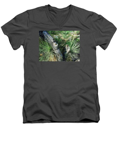 Men's V-Neck T-Shirt featuring the photograph Yucca Cactus On The Arizona Desert by Merton Allen