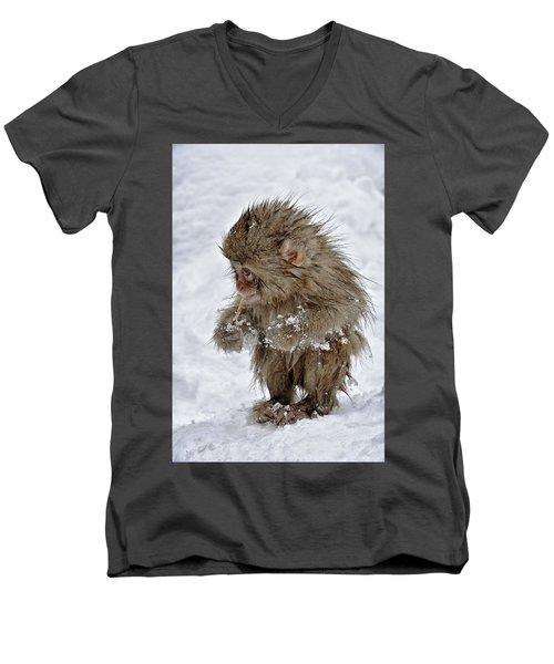 Yummy? Men's V-Neck T-Shirt