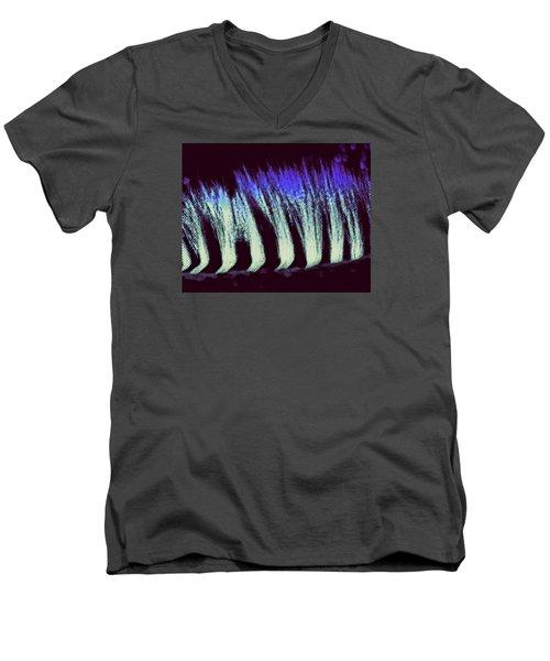 Zebra II Men's V-Neck T-Shirt