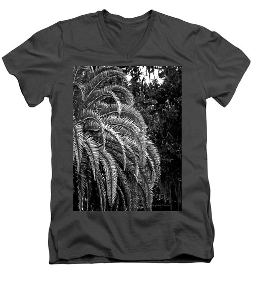 Men's V-Neck T-Shirt featuring the photograph Zebra Palm by DigiArt Diaries by Vicky B Fuller
