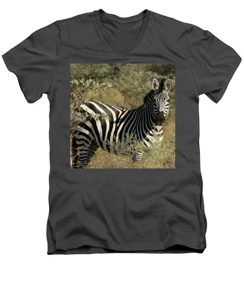 Zebra Portrait Men's V-Neck T-Shirt