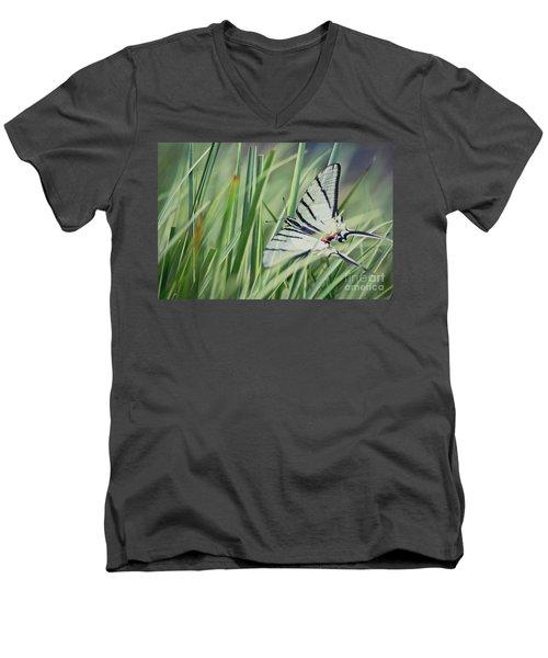 Zebra Swallowtail Men's V-Neck T-Shirt