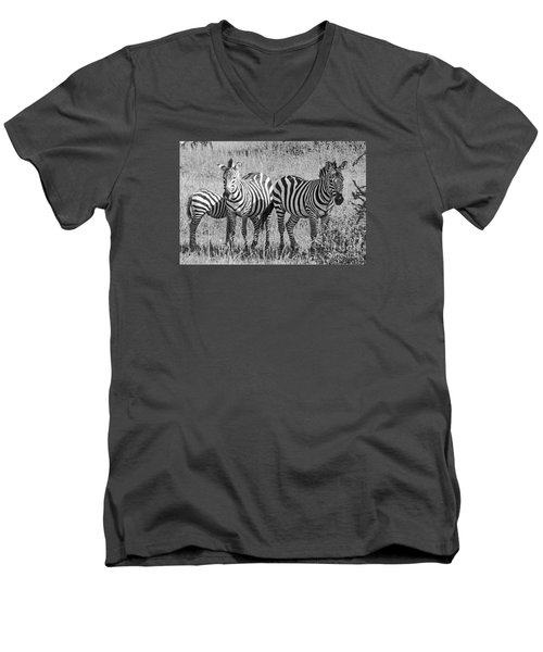 Men's V-Neck T-Shirt featuring the photograph Zebras In Thought by Pravine Chester