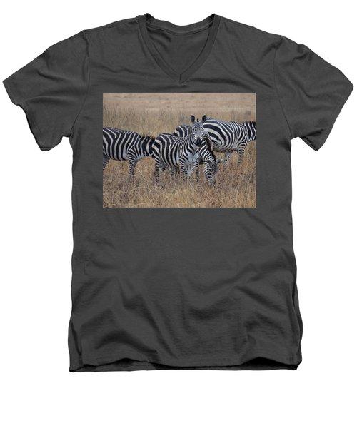 Zebras Walking In The Grass 2 Men's V-Neck T-Shirt by Exploramum Exploramum
